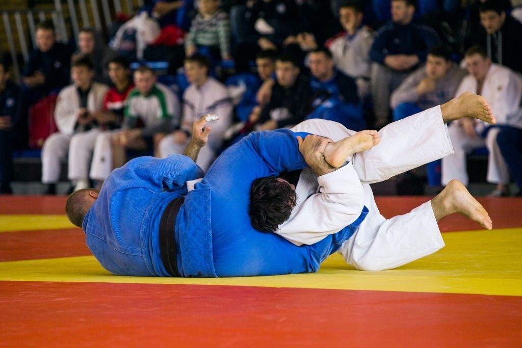 Types of Japanese Martial Arts - Jujutsu