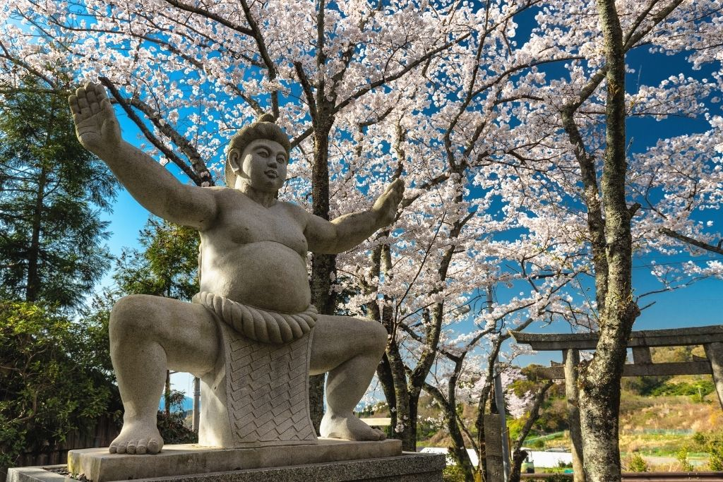 Types of Japanese Martial Arts - Sumo
